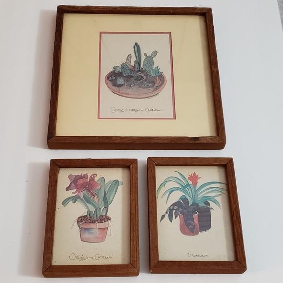 Vintage Plant Water Color Art Dandeleau 1976